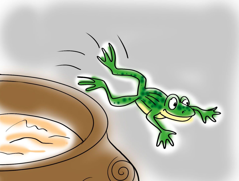 Лягушка взбивает масло картинка